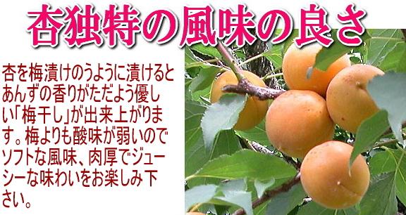 杏独特の風味の良さ。杏を梅漬けのように漬けると杏の香りがただよう優しい「梅干」が出来上がります。